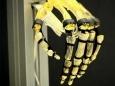 Инновационные искусственные мышцы могут поднимать в 80 раз больше собственного веса