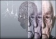Лекарство от болезни Альцгеймера создали шведские ученые