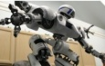 Разработка  роботов - аватаров и  гиперзвуковых  технологий в России