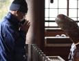 Японский праздник пениса и вагины