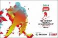 В Минске стартовал чемпионат мира по хоккею
