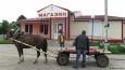 Почему сельхозреформы Лукашенко обречены на провал
