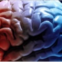Здоровье: Красный и синий цвета контролируют жизнь человека