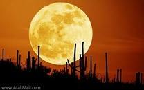 Ученые: Луна родилась из-за гигантского столкновения